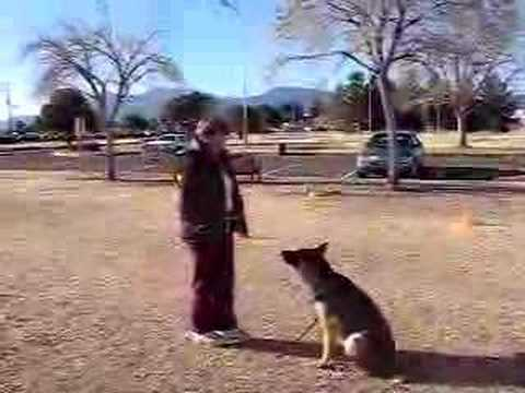 Heeling and focused attention