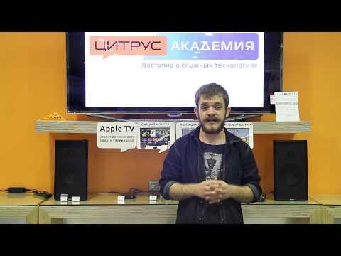 Цитрус Ивенты - YouTube