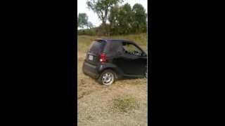smart fortwo offroad donuts