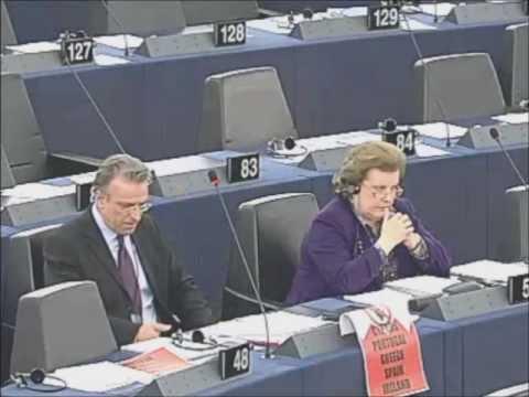 European Parliament 2013 (solidary?)