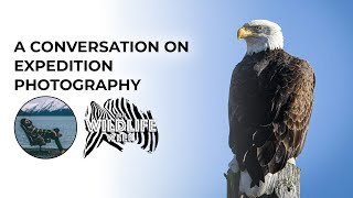 Dave Mullen: A Conversation on Expedition Photography | #BHWildlifeWeek