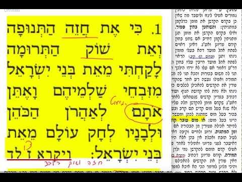 חולין קל 130 שבת א׳ ניסן תשע״ט Daf yomi Chullin daf 130 Shmuel Navon