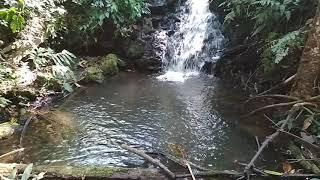Mt. Sinai Refuge- Creek and small waterfall
