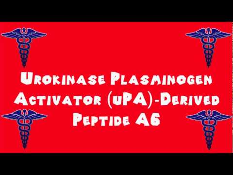 Pronounce Medical Words ― Urokinase Plasminogen Activator uPA Derived Peptide A6
