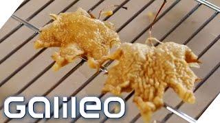 Foodtrend: Frittierte Ahornblätter aus Japan | Galileo Lunch Break