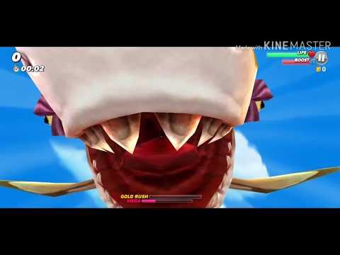 Review Hury Shark
