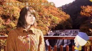 磯山さやかさんが,紅葉狩りの季節を迎えた「茨城の紅葉」を紹介します...