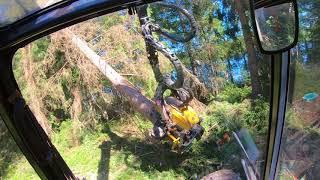 Omassa metsässä räiskimässä risukkoa matalaksi. Ponsse scorpion king h7