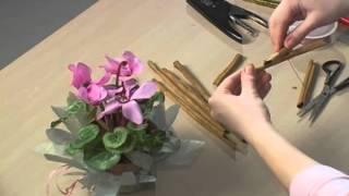 упаковка цветка в горшке. Вариант 2