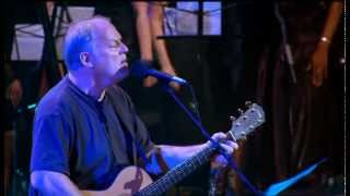David Gilmour - Live at Robert Wyatt