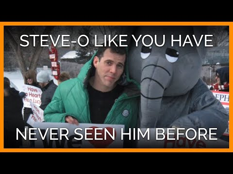 Steve-O Like You Have Never Seen Him Before