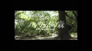 Norwegian Wood (2010) Trailer (English Subtitles)