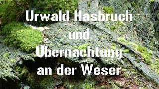 Urwald Hasbruch und Übernachtung an der Weser
