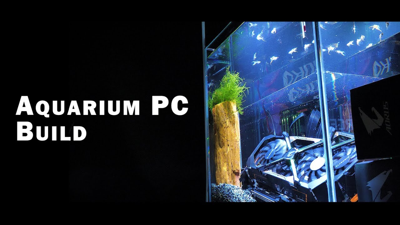 aorus mod project aquarium pc build youtube
