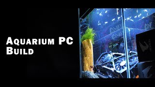 AORUS Mod Project | Aquarium P…