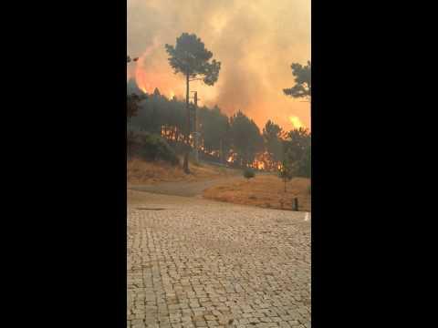 Metsapõleng Portugalis