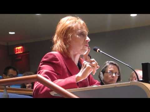Dr. Judy Kuriansky intervention during OWG Multistakeholder dialogue