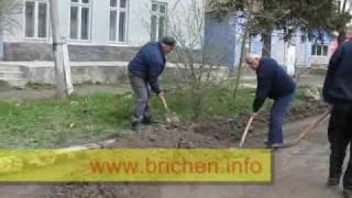 Озеленение и благоустройство Бричан.wmv(, 2010-04-17T14:21:35.000Z)