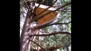 My 42 Ft High Treehouse