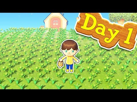 I Spent $100,000 On Flowers On Day One In Animal Crossing New Horizons