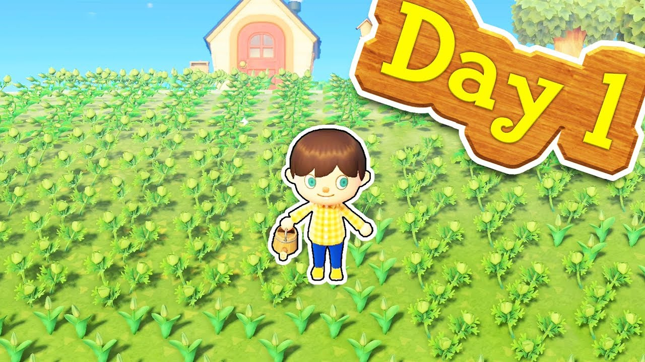 I Spent 100 000 On Flowers On Day One In Animal Crossing New