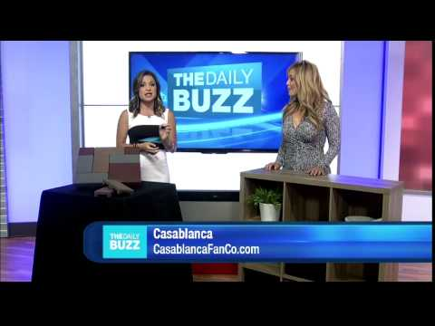 Casablanca Heathridge on The Daily Buzz