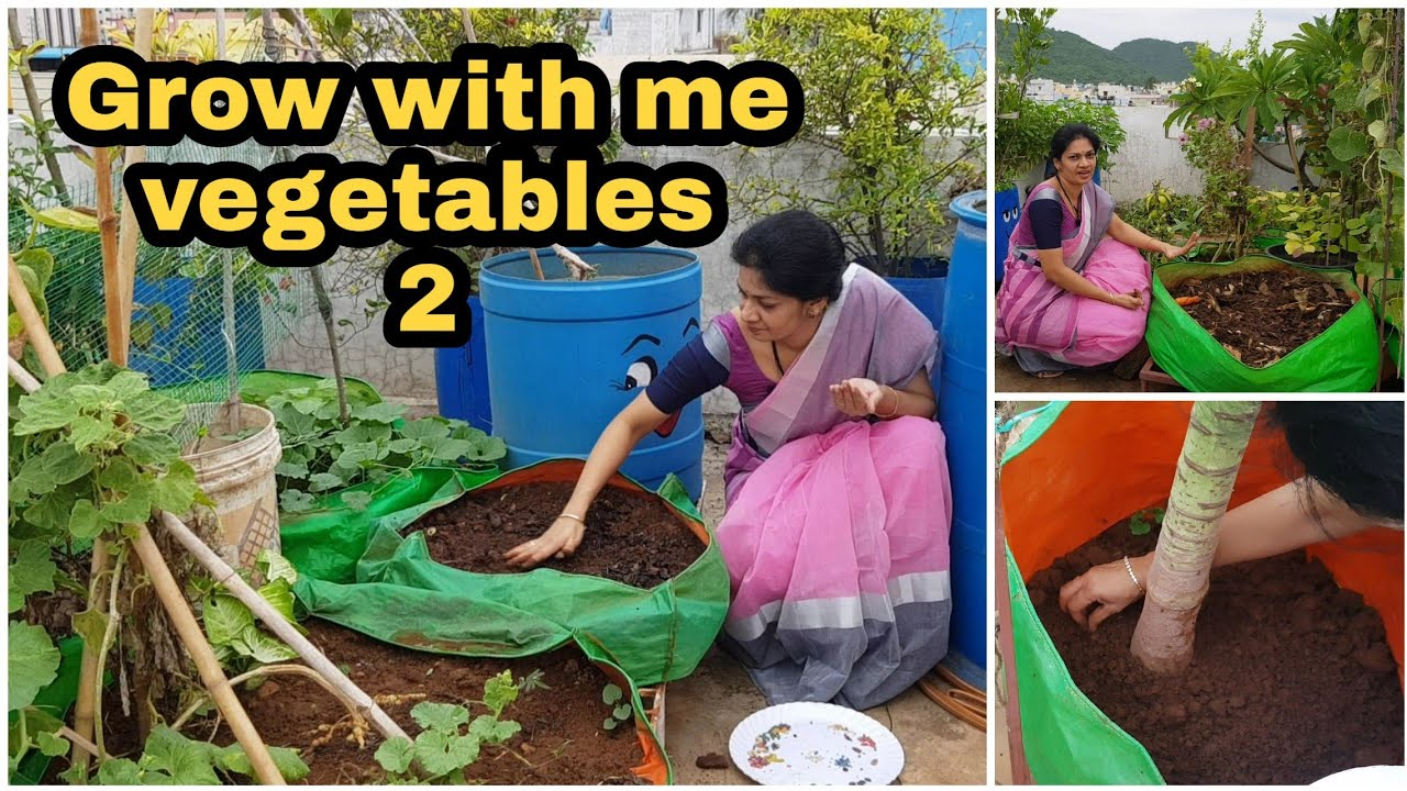 #Growwithme Vegetables-2/ beginners guide to sow different seeds/నాతోపాటు పెంచండి #madgardener #tips