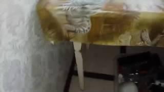 видео морить тараканов