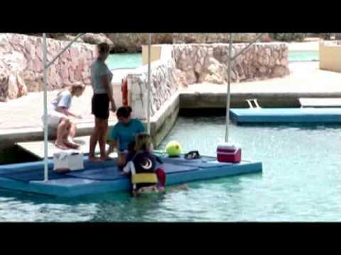 Promo film CDTC (dolfijnen therapie curaçao)