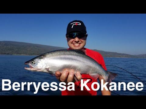Lake Berryessa Kokanee Fishing
