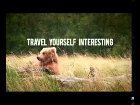 Expedia Bear Ad Travel Yourself Interesting Yellowstone National Park