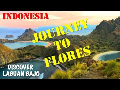 HOW TO GET TO LABUAN BAJO FLORES | BEST HOSTEL | CIAO HOSTEL | Travel Vlog 91