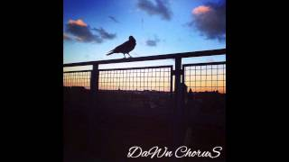 Dawn Chorus- Struttin