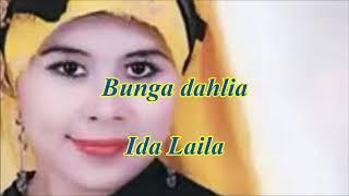 Bunga dahlia by Ida Laila