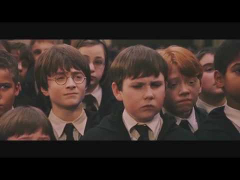 Harry Potter The Abridged Movie