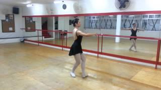 Baixar Evelyn passos de ballet 20131121_193148.mp4