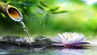 Relaxing Piano Music: Sleep Music, Water Sounds, Relaxing Music, Meditation Music, Calming Music