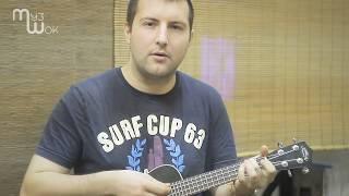 Мой рок-н-ролл в исполении Егора Квартального. Уроки укулеле в МузШок