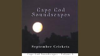 September Crickets Part 6