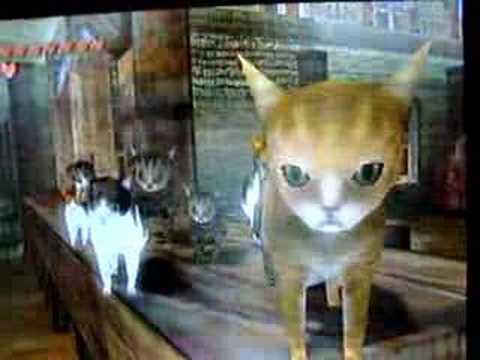 The Legend Of Zelda Twilight Princess Cats Youtube
