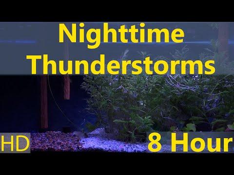 Somewhere Aquarium 8 hour Nighttime Thunderstorms HD 1080p