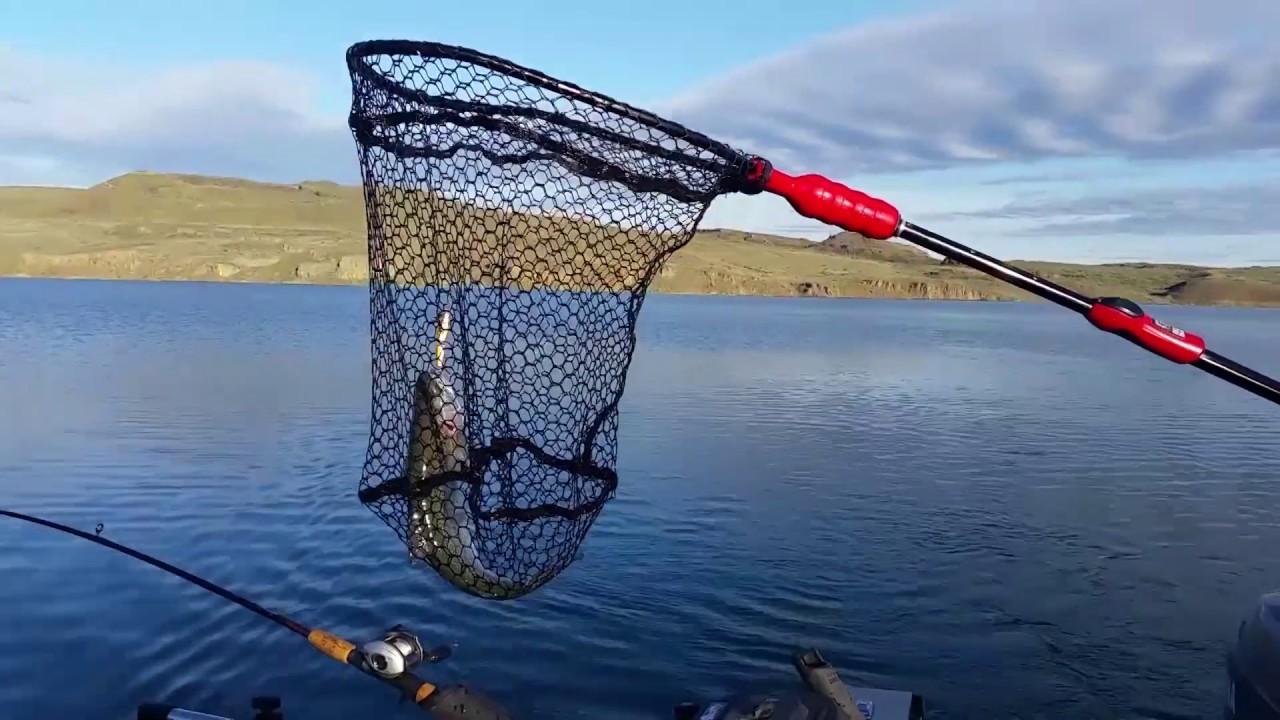 Free Fishing Weekend 2020-06-05