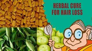 Hair Loss Treatment for Men & Women - Ayurvedic Natural Home Remedies - Hair Loss Home Remedies thumbnail