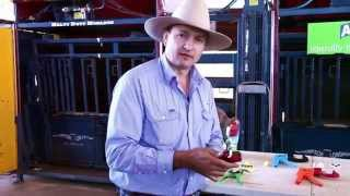 Allflex Cattle Tag Options: Overview