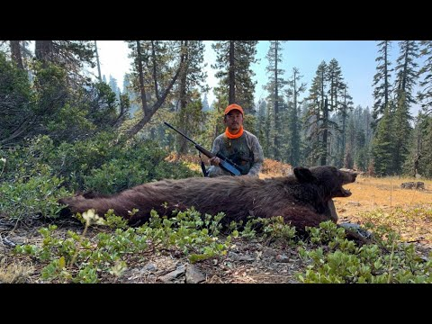2020 Deer and Bear Hunting in California | first pack out off a deep valley