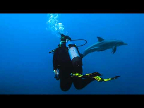 Cocos Keeling Islands   Dive in Paradise