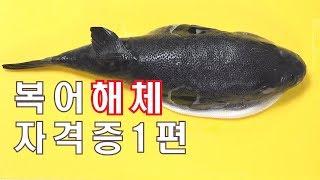 복어 해체 / 복어자격증 1편 / 복어기능사실기 / 복…