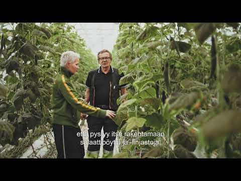 Jetta Kulmalan isä aloitti päättäväisyydellään luomuviljelyn Kulmalan Puutarhassa.