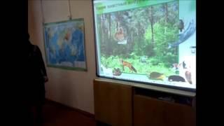 """Урок с использованием интерактивной доски  Окружающий мир """"Невидимые нити"""""""