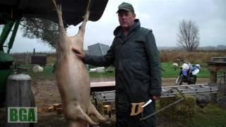 Pig Butchering at Bakers Green Acres part 2/3